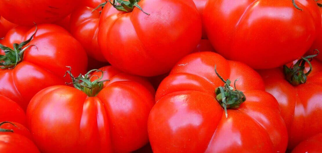 tomatoes 5356 1920 3